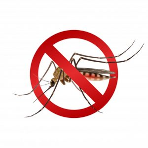 Mosquito Stop Sign 98292 2469 300x300